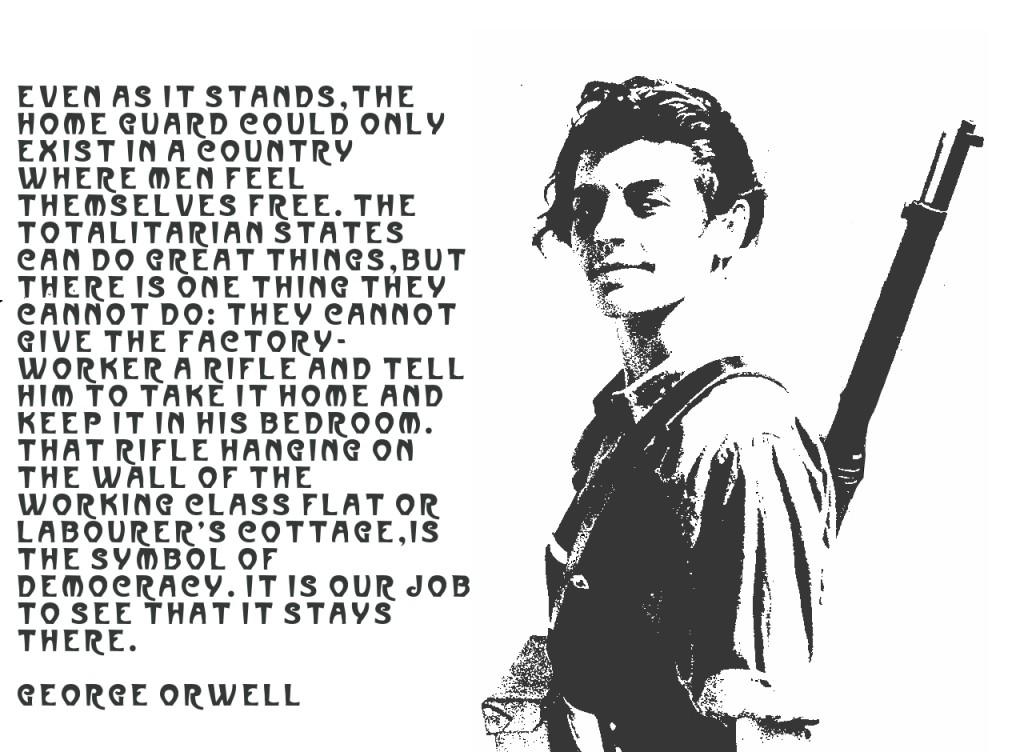 orwell_rifle